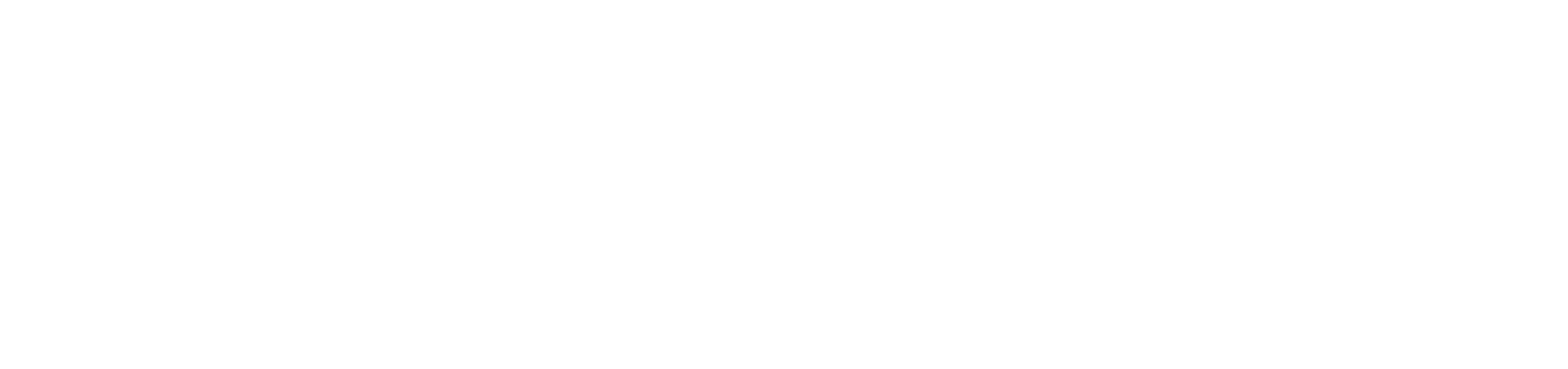Wellington Youth Events Society Incorporated
